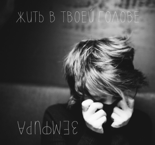 z_album_2013_f